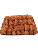 Hazelnut Apolline tray 1500g